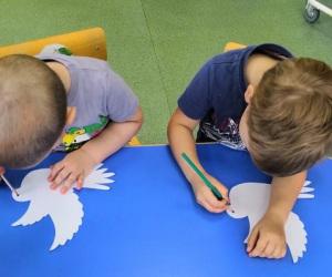 голубь-мираголубьмира